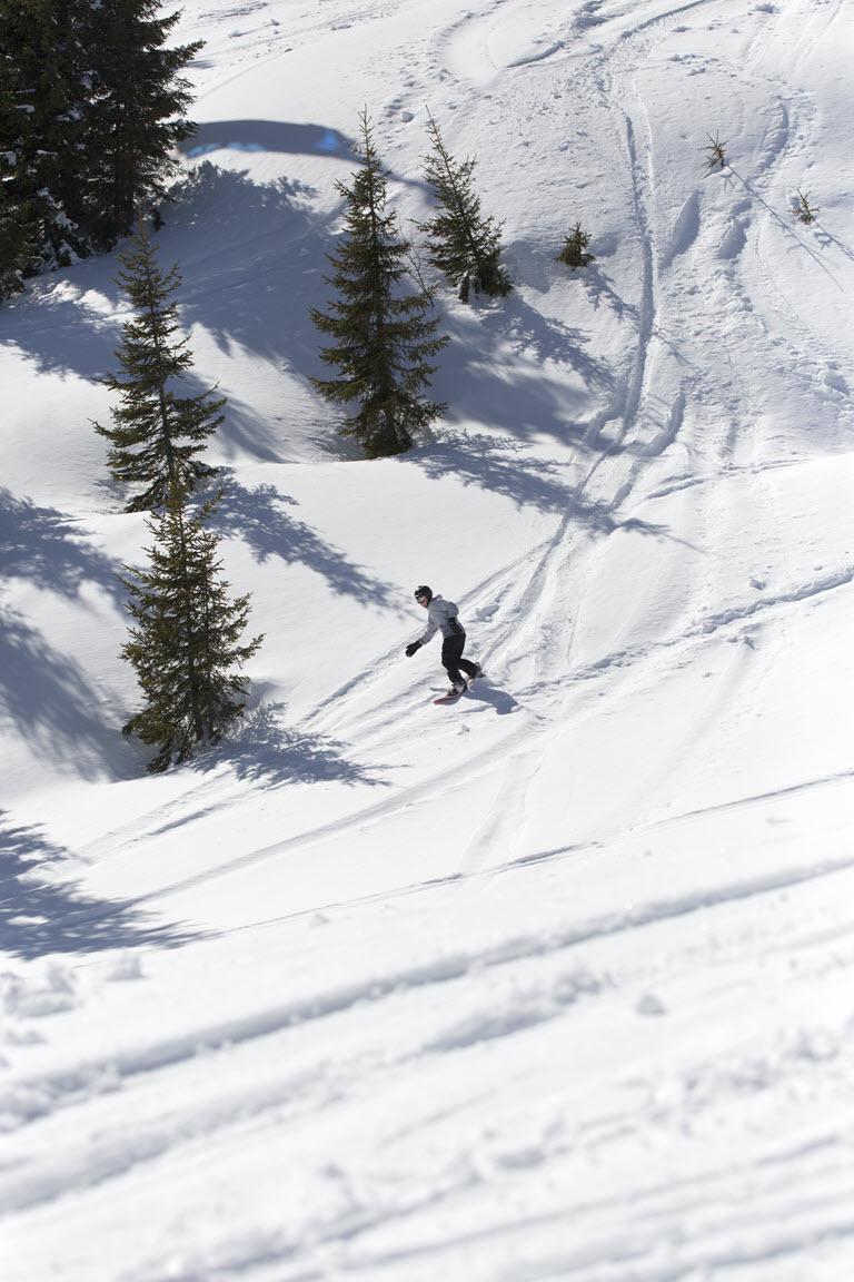 Boarden in verse sneeuw